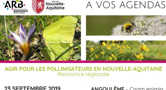 Lg save the date journ e pollinisateurs 2019 v2